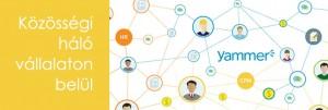 yammer a vállalati közösségi háló